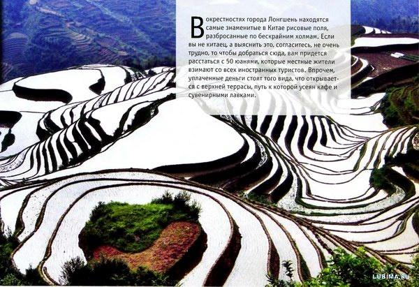Бескрайние рисовые поля Китая