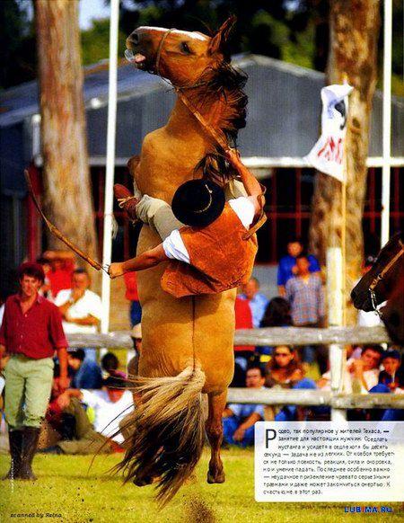 Зависнуть в воздухе на коне